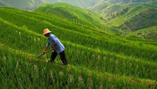 Soonapse all'incontro Italo Cinese sulla Green Economy